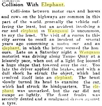 elephant and car article